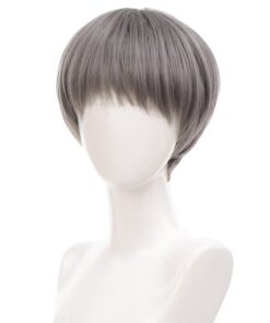 AILIADE Synthetic Cosplay Wigs with Bangs Straight Grey Black Blue Brown Wigs for Woman